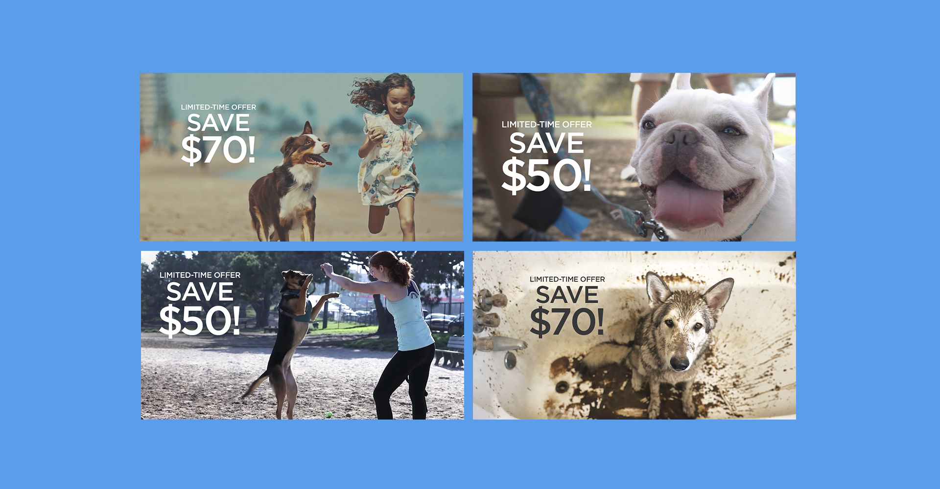 BISSELL BARKBATH™ grid of social ad images by Blue Flame Thinking